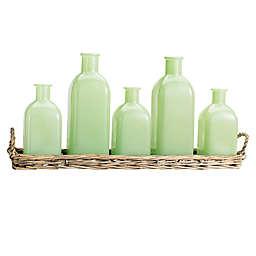 Home Essentials Set of 5 Jadeite Bottles in Wicker Tray