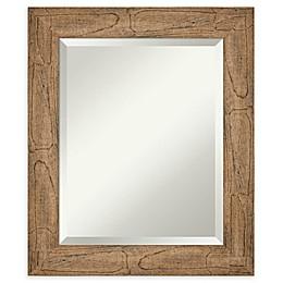 Amanti Art Owl Brown Framed Bathroom Mirror