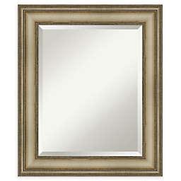 Amanti Art Narrow Mezzanine Silver Framed Bathroom Mirror