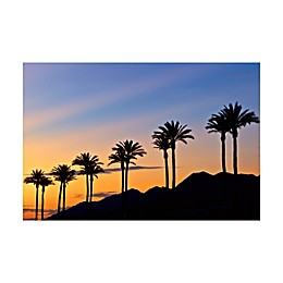 Palm Sunrise 30-Inch x 40-Inch Canvas Print Wall Art
