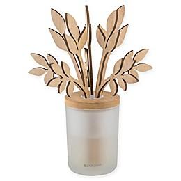 SpaRoom® Forestation™ Vanilla Bean Reed Diffuser