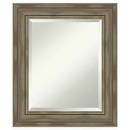 Amanti Art Alexandria Greywash Framed Wall Mirror