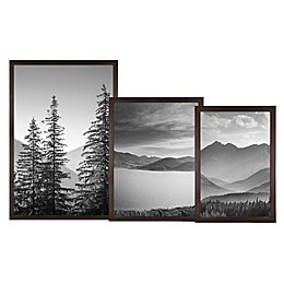 Gallery Wood Picture Frame in Espresso