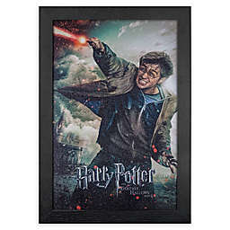 Harry Potter and the Deathly Hallows, Part II 13-Inch x 19-Inch Framed Print