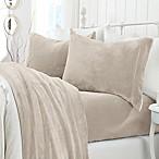Great Bay Home Velvet Queen Sheet Set in Light Grey
