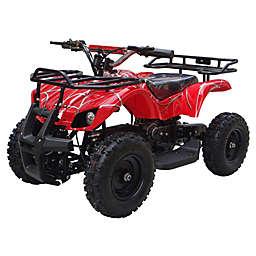 MotoTec 24-Volt Mini Quad V4 Battery-Powered Ride-On