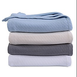 Berkshire 2019 Cotton Blanket