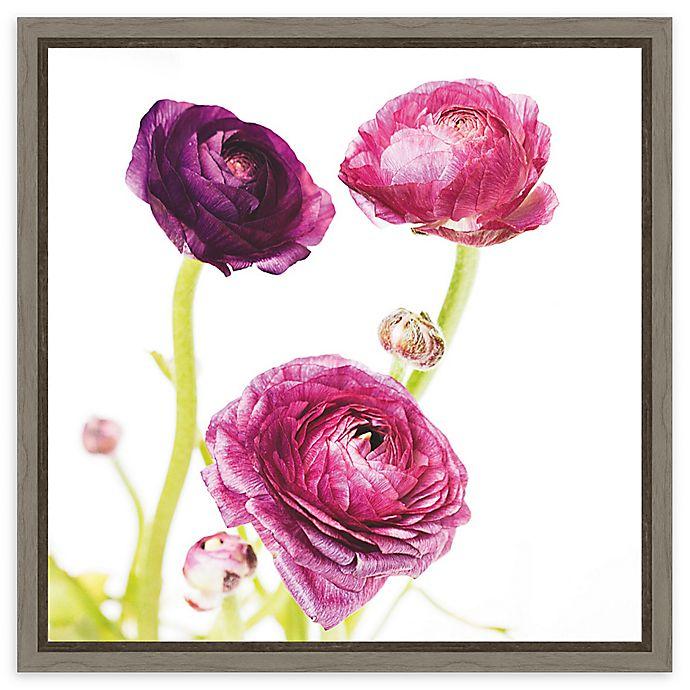 Alternate image 1 for Amanti Art Spring Ranunculus I Framed Canvas Wall Art
