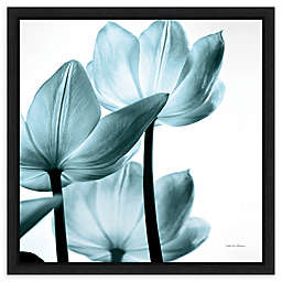 Amanti Art Translucent Tulips III Sq Aqua Crop Framed Canvas Wall Art