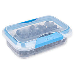 Décor® Match-Ups® Clips 20 oz. Oblong Food Storage Container in Blue