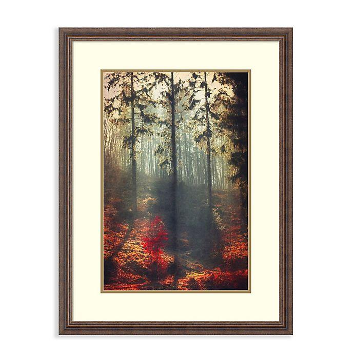 Alternate image 1 for Amanti Art® Dirk Wuestenhagen Landscapes 25.5-Inch x 33.5-Inch Acrylic Framed Print in Brown