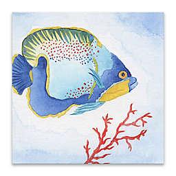 Galapagos Fish I 18-Inch Canvas Wall Art