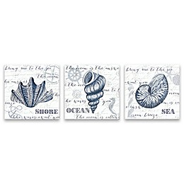 Indigo Shell 14-Inch Wrapped Canvas Wall Art (Set of 3)