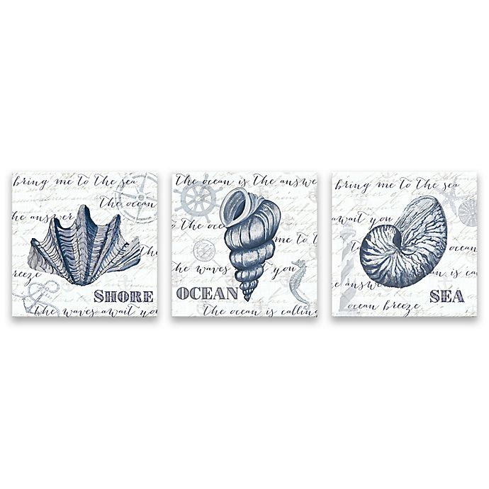 Alternate image 1 for Indigo Shell 14-Inch Wrapped Canvas Wall Art (Set of 3)