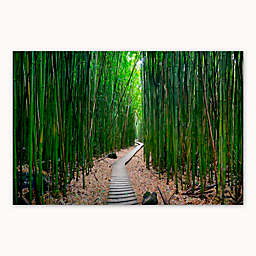 Colossal Images    Bamboo Path Canvas Wall Art