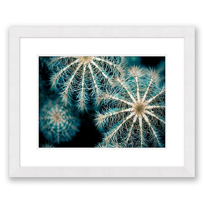 Alternate image 1 for Sea Urchins 31.5-Inch x 25.5-Inch Paper Framed Print Wall Art
