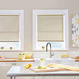 Palm Cordless 64-Inch Length Roller Shade