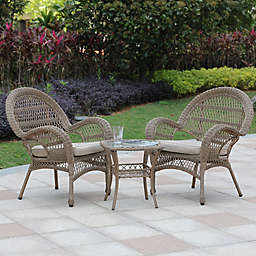 Winsome House® 3-Piece Outdoor Conversation Seating Set in Brown