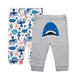 Rosie Pope Baby® 2-Pack Nautical Shark Pants