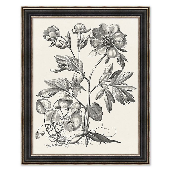 Alternate image 1 for Floral Etching 1 32.25-Inch x 26.25-Inch Framed Print Wall Art in Black/White