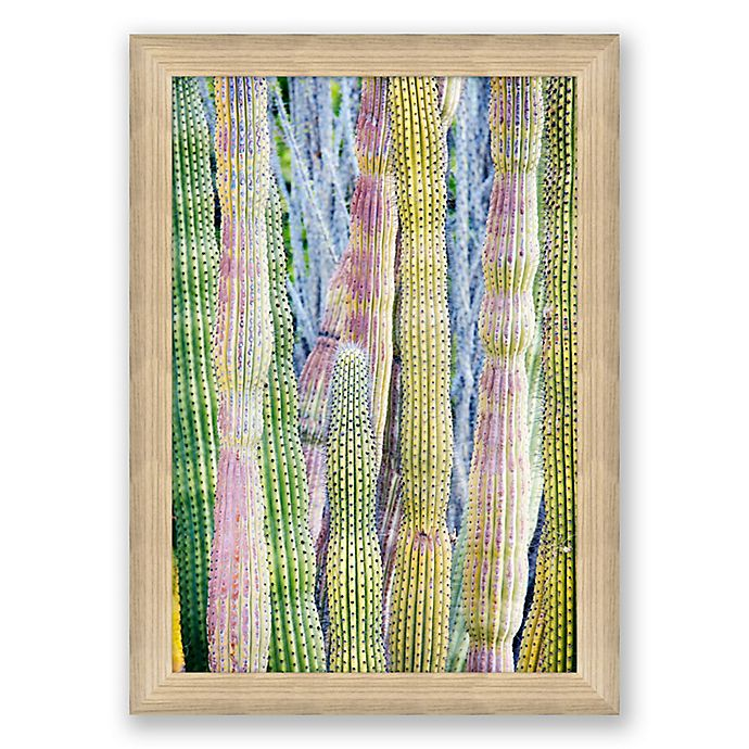 Alternate image 1 for Cacti 22.5-Inch x 31.5-Inch Paper Framed Print Wall Art