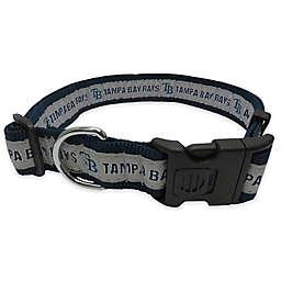 MLB Tampa Bay Rays Extra Large Pet Collar