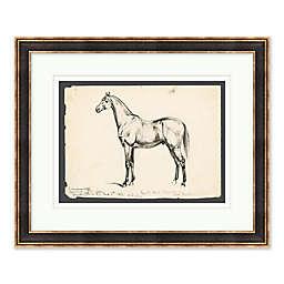 Horse Sketch 22.75-Inch x 18.75-Inch Framed Wall Art