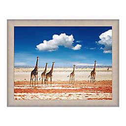 Herd of Giraffes 45.25-Inch x 35.25-Inch Framed Wall Art