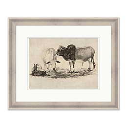 PTM Images Two Cows 19.25-Inch x 23.25-Inch Framed Print Wall Art
