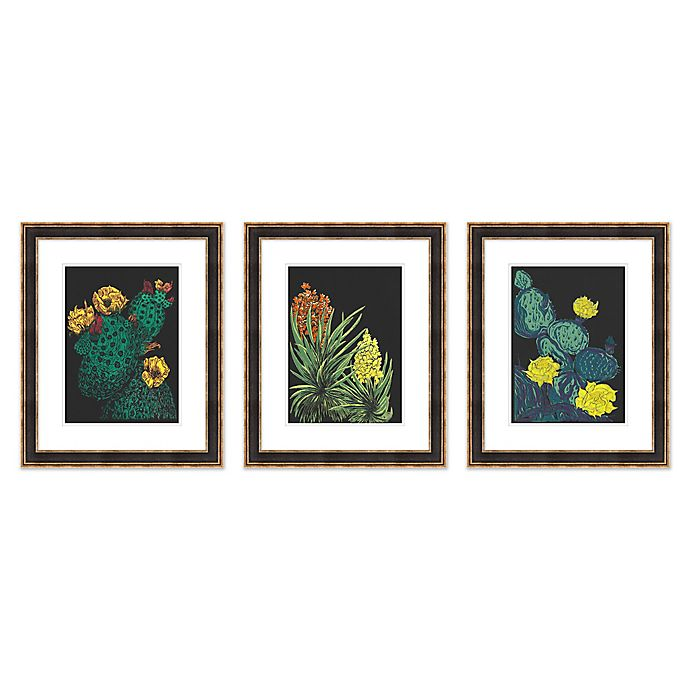 Alternate image 1 for Cacti 18.75-Inch x 22.75-Inch Paper Framed Print Set of 3