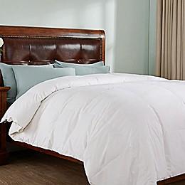 Peace Nest All Season Down Comforter in White