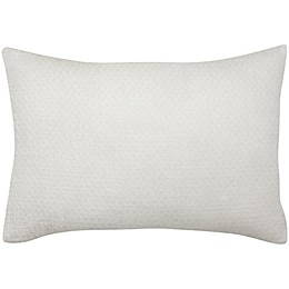 ED Ellen DeGeneres Vicente Oblong Throw Pillow in White