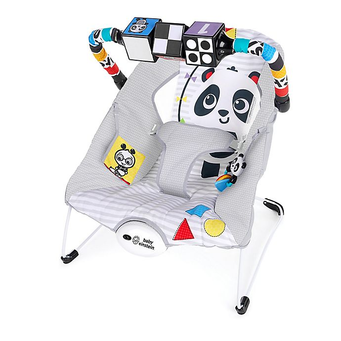 Alternate image 1 for Baby Einstein™ More to See™ High Contrast Bouncer