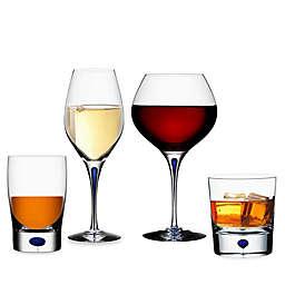 Orrefors Intermezzo Blue Wine & Bar Collection