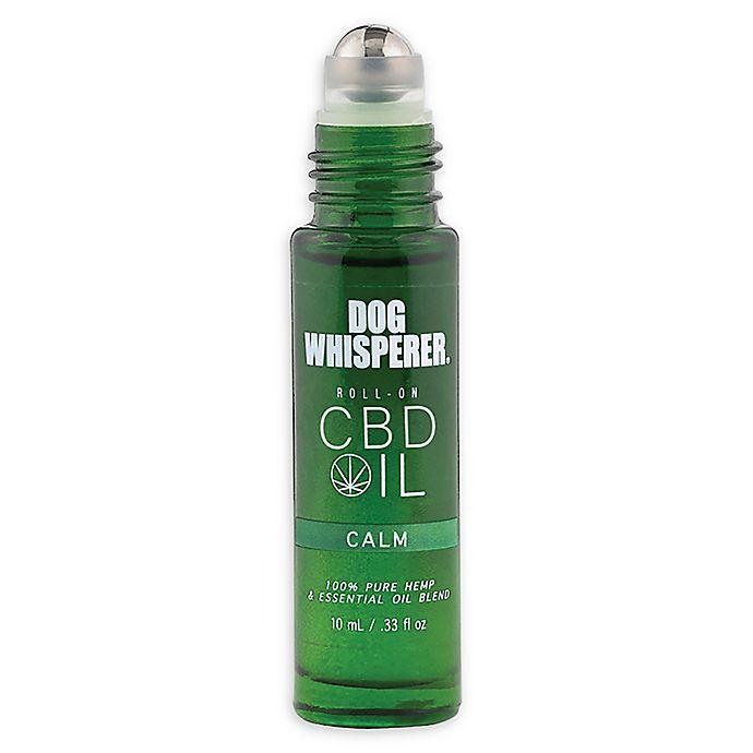 Alternate image 1 for SpaRoom® Dog Whisperer® Calm CBD Essential Oil Roll On
