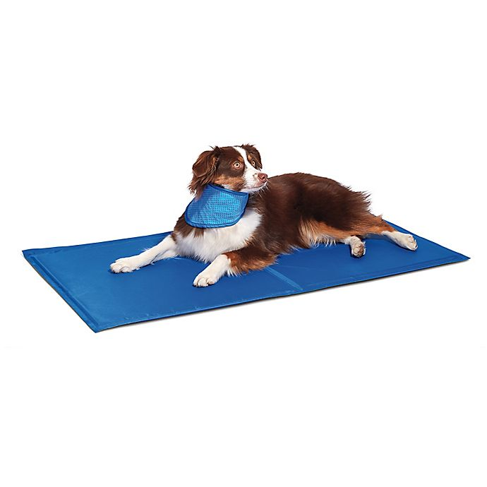 Alternate image 1 for Pawslife® Cool Pad in Blue
