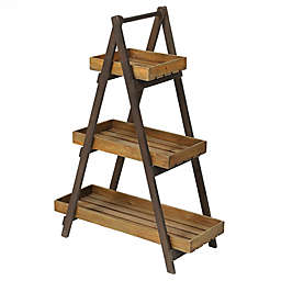 Winsome House 3-Tier Ladder Plant Stand in Natural Wood