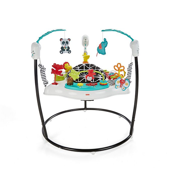 Alternate image 1 for Fisher-Price® Animal Wonders Jumperoo®