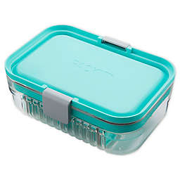 PackIt® Mod Lunch Bento Box in Mint