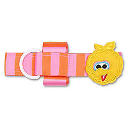 Sesame Street® Bottle Tethers (Set of 2)