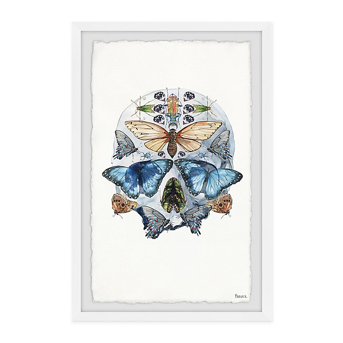 Alternate image 1 for Parvez Taj Half Butterfly Skull 8-Inch x 12-Inch Framed Wall Art