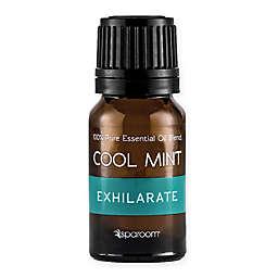 SpaRoom® Cool Mint 10 mL Essential Oil