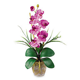 Nearly Natural 24-Inch Phalaenopsis Orchid Silk Faux Flower Arrangement
