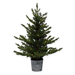 Bee & Willow™ Home 3-Foot Pre-Lit LED Battery Operated Potted Artificial Christmas Tree