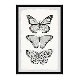 Marmont Hill Butterfly Trio II Framed Print