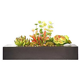 Laura Ashley® Tall Succulents Planter in Brown