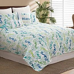 C&F Home Aquarius Reversible Quilt Set in Aqua
