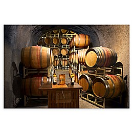 Christopher Knight Collection Wine Barrels in Napa Canvas Wall Art
