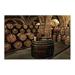 Christopher Knight Collection Wine is Good Napa Canvas Wall Art