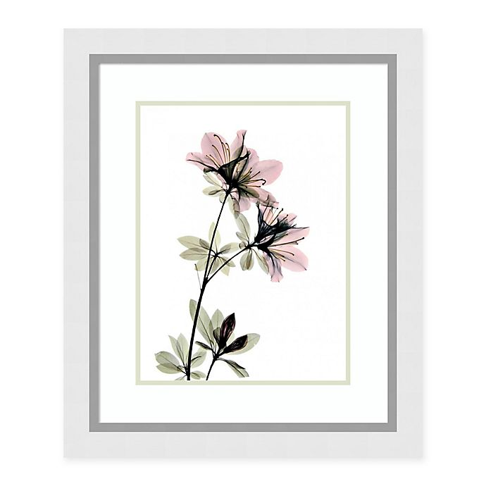 Alternate image 1 for Amanti Art® Acee Floral Photography 24-Inch x 28.62-Inch Acrylic Framed Print in White